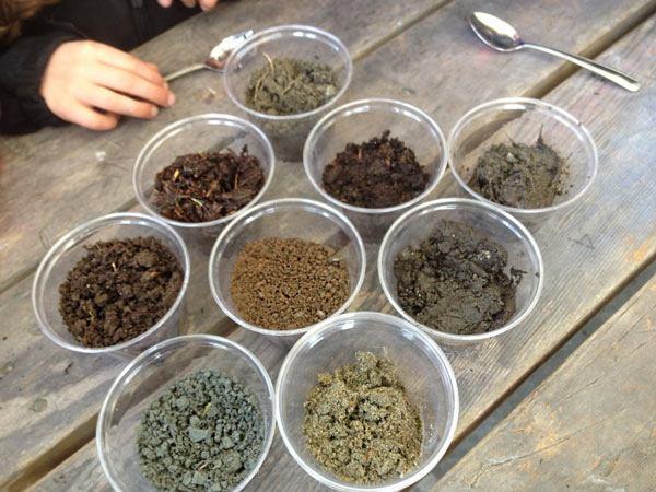 Правильный грунт для пряных трав
