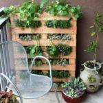выращивание растений в палетах