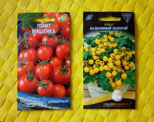 Семена балконных помидоров, которые участвуют в эксперименте.