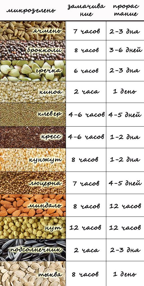 таблица проращивания микрозелени