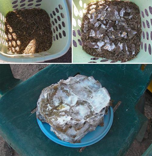 наполнение корзины мицелием и соломой