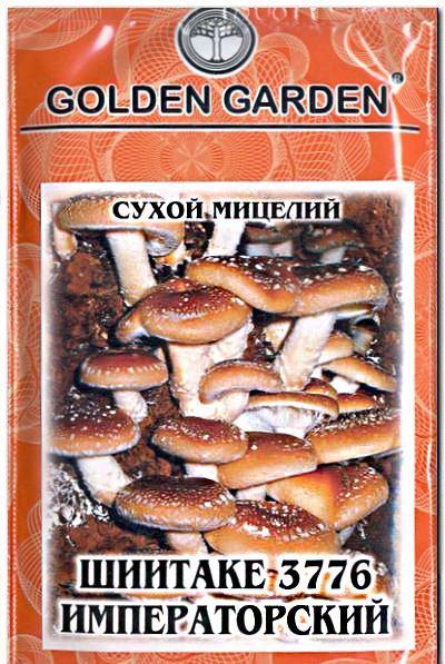сухой мицелий