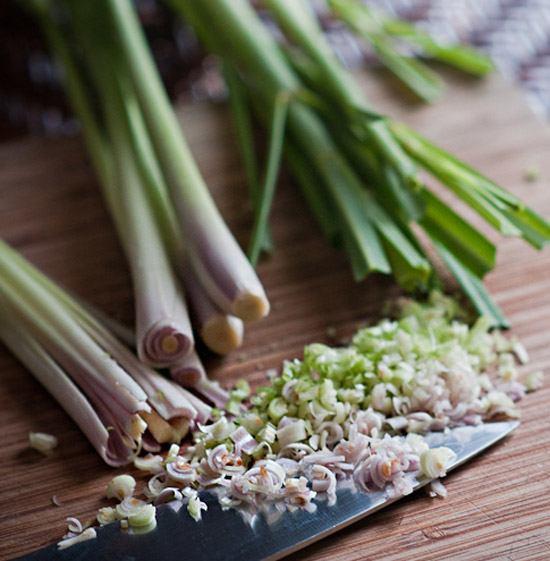 Где купить семена лемонграсс и как ее выращивать?