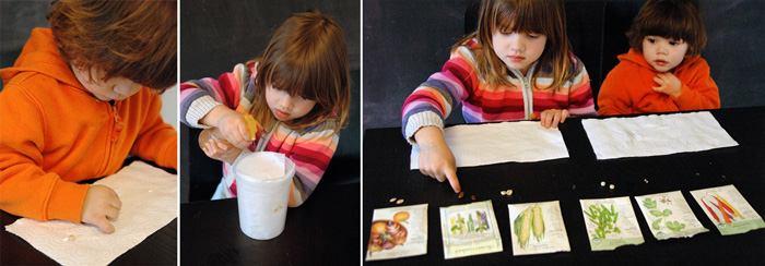 Детям о растениях