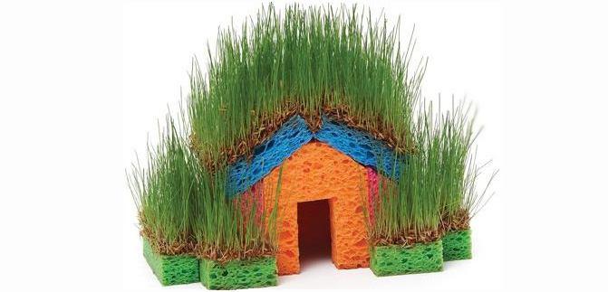 домик для проращивания из губок