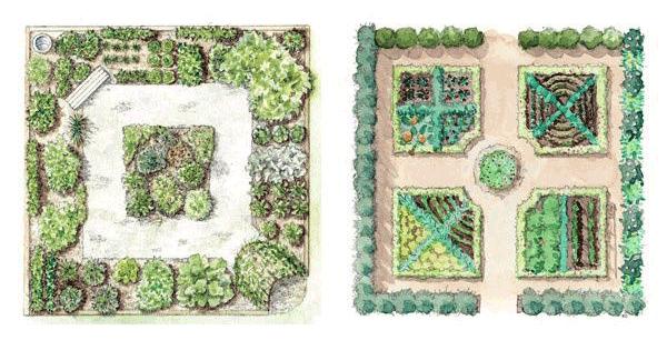 Чертеж грядок на огороде
