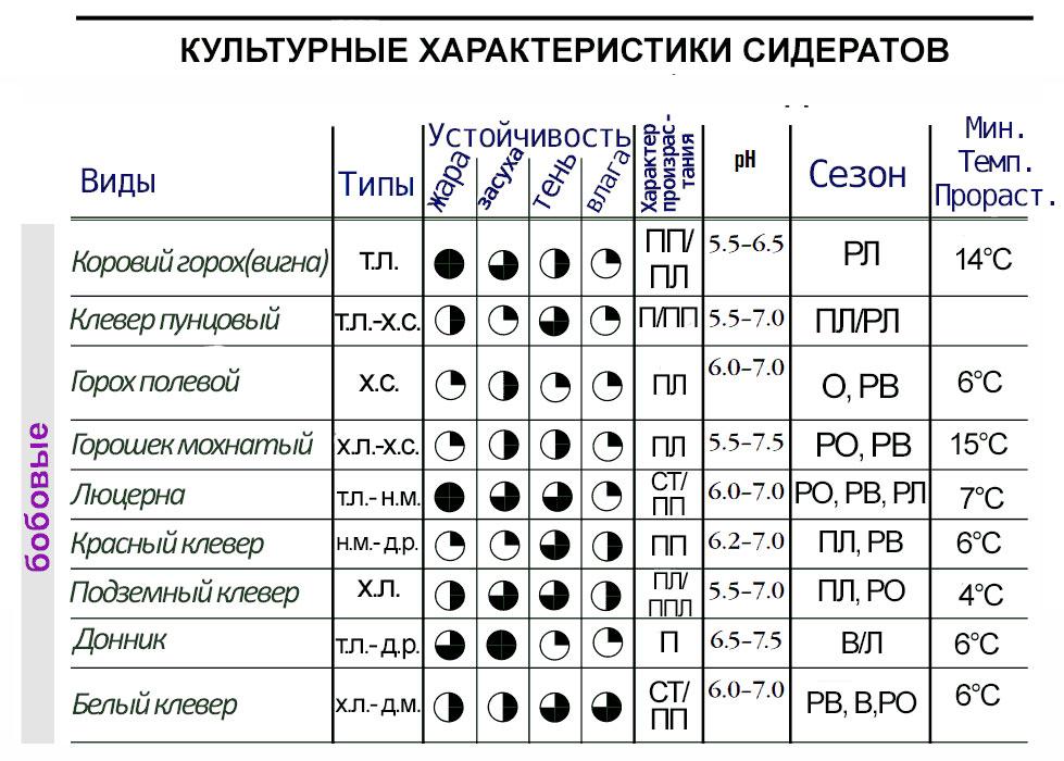 Характеристики бобовых сидератов